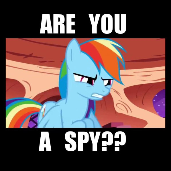 mlp-rainbow_dash-spy
